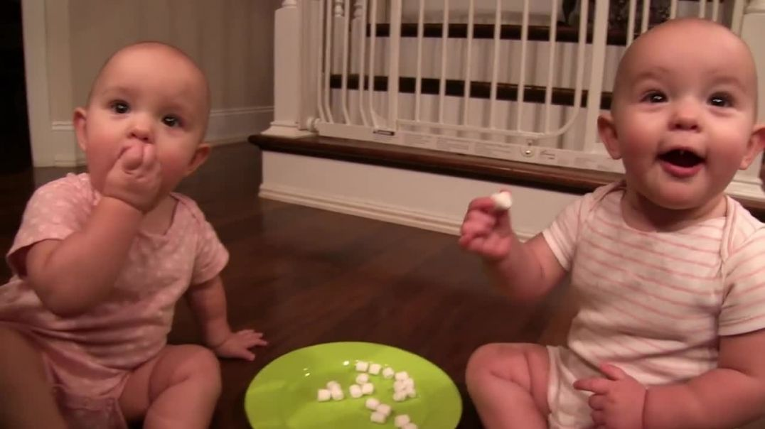 Twin Babies Sharing Too Many Marshmallows