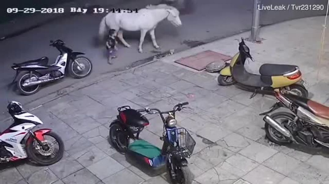 Shocking CCTV footage shows toddler being kicked by a horse.mp4