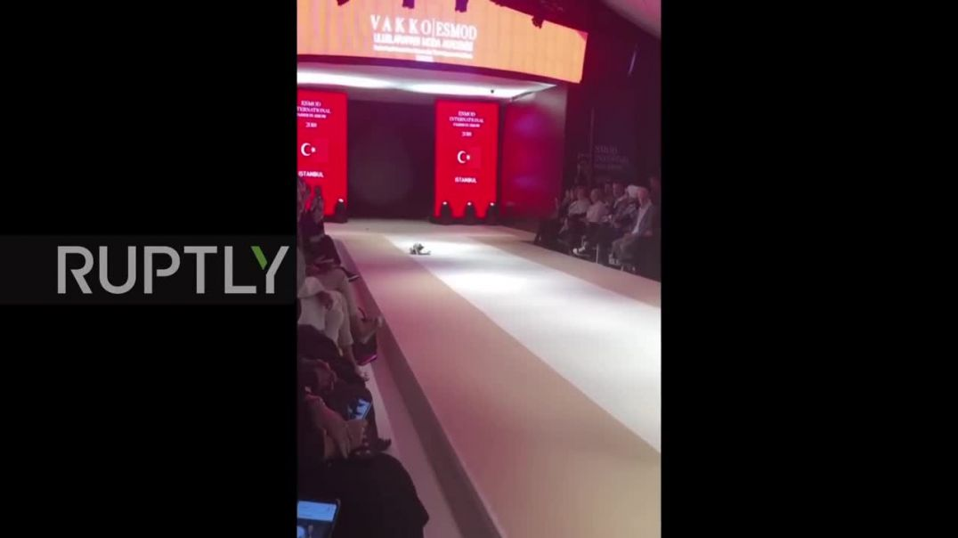 CAT Moss! Fashionable feline prowls the runway at Istanbul fashion show.mp4